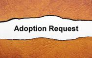 Stock Illustration of adoption request