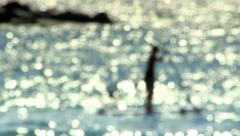Surfer in a Calm See out of Focus Stock Footage