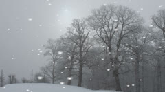 Falling snowflakes in a rural landscape Stock Footage