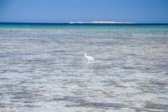 Red Sea coast line near Hurhada - stock photo
