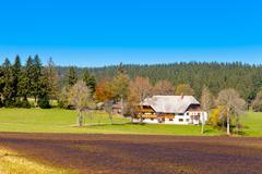 Typical black forest farmhouse Stock Photos
