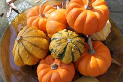 Decorative Gourds - stock photo