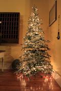 Antique Shop -- Christmas Tree Stock Photos
