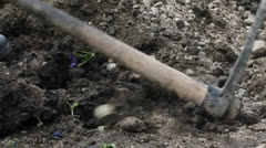 Digging with Hack Stock Footage