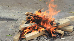 Wood campfire burning Stock Footage