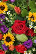 Flower arrangement in bright colors Stock Photos