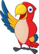 Macaw bid carton waving Stock Illustration