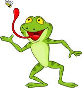 Funny cartoon frog catching fly Stock Illustration