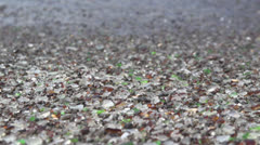 Glass Beach in Fort Bragg, Dolly Shot Stock Footage