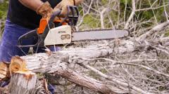 Cutting cedar wood with chansaw Stock Footage