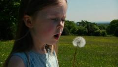 Child with dandelion Stock Footage