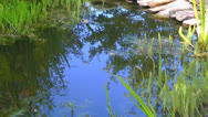 Reflection of sky and gentle ripple on the waters of a small pond Stock Footage