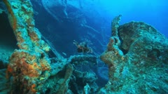 Lion fish at the ship wreck of Thistlegorm Stock Footage