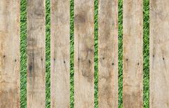 old wood on grass background - stock photo