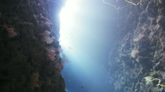 Sun beams inside the cave Stock Footage
