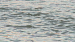 Water background 2 - golden surface Stock Footage
