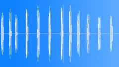 wood pigeon - sound effect