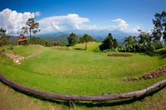 green grass with mountain - stock photo