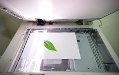 Save the tree concept Stock Photos