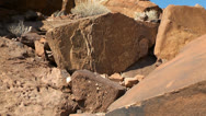 Ancient rock engravings in namibia Stock Footage