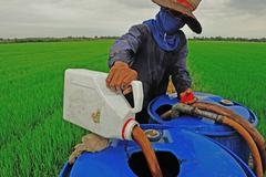 farmer mixing pesticide on the rice field - stock photo