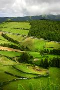 Azores green fields at sao miguel island Stock Photos