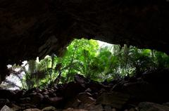 View from cave on rain forest. Stock Photos