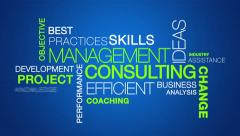 Management Consulting word cloud text animation Stock Footage