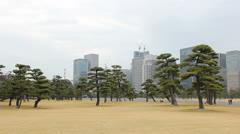 Tokyo's imperial garden Stock Footage