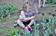 Girl Smelling a Flower at Washington DC Garden Stock Photos