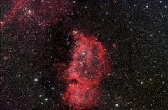 emperor nebula ic1848 - stock photo