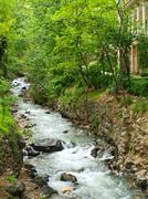 Metsä stream käynnissä yli kivien Teheranissa Iranissa Kuvituskuvat