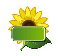 Stock Illustration of vector sticker and sunflower