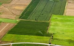 Irrigated cropland, aerial view Stock Photos