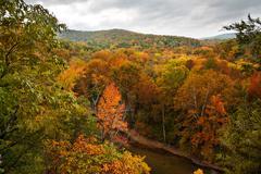 Bufallo river in the autumn Stock Photos