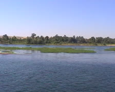 Nile river long shot with trees on riverbank Stock Footage