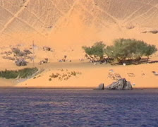 Sand dunes on the banks of the Nile River in Egypt Stock Footage