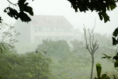 typhoon - stock photo