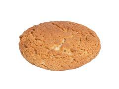 single oat cookie - stock photo