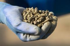 organic alfalfa pellets - stock photo