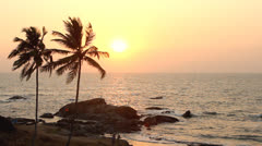 India Goa Vagator beach February 20, 2013. Palm Trees Silhouette At Sunset Stock Footage