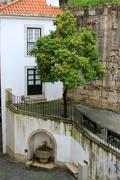 orange tree and fountain in alfama - stock photo