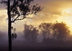 Sunrise in the australian countryside Stock Photos