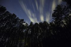 Clouds moving across the night sky - stock photo
