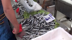 Anchovy at sale - stock footage