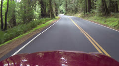 Driving POV California redwood higway fast timelapse HD 023 Stock Footage