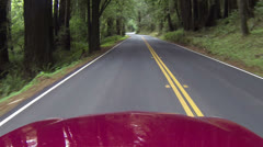 Redwood forest northern California driving POV HD 023 Stock Footage