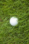 Golf ball on the grass Stock Photos