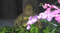 Buddha image with Pink Flowers and waterfall p139 Stock Footage