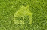 Icon home on green grass,  texture background Stock Illustration